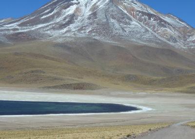 Laguna Miscanti (52)